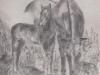 cavalo e vaca